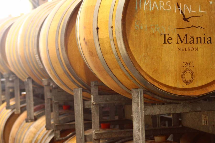 coriander's favourite south island wineries